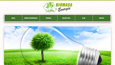 Web Design Brasov Biomasa Energie
