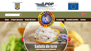Web Design Brasov Doripesco