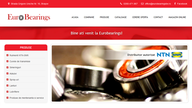 Web Design Brasov Euro Bearings