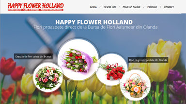 Web Design Brasov Happy Flower