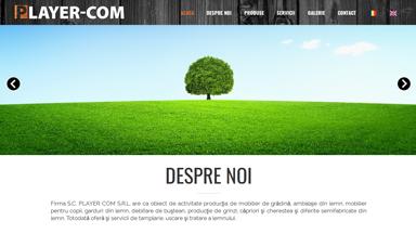 Web Design Brasov Mobila