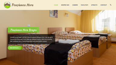Web Design Brasov Pensiunea Hora