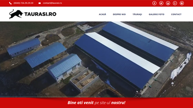 Web Design Brasov Ferma Bovine