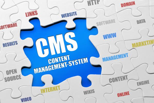 CMS Brasov - Administrare SEO Website Brasov
